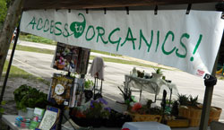 Photo of ACCESS to ORGANICS Booth at Bonner Center for Earth Day 2012