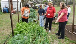 Photo of NSBHS Students visiting the Elk's Lodge Garden.