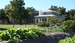 Photo of Red Maple Farm in Edgewater, FL